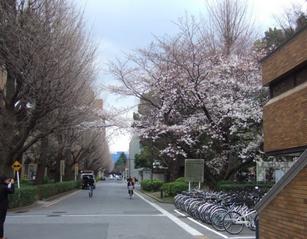 日本研究生申请