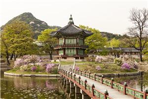 日本留学,留学生活